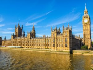 Houses Of Lords call for government to delay making tax digital